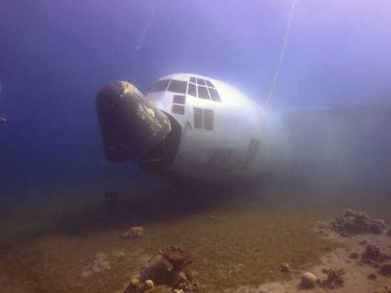 Neptune Boat: the military transport C-130 Hercules with Neptune you will be able to see it in the Red Sea Aqa