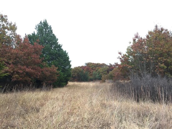 Decatur, TX: Fall views at the Grasslands