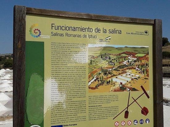 Prado del Rey, Spanien: 20170816_120411_large.jpg