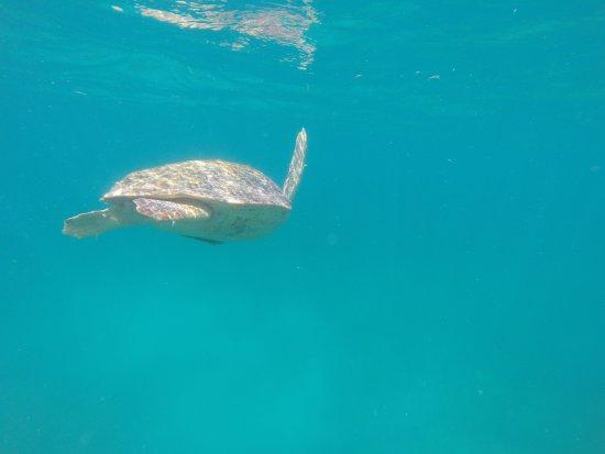 Placencia, Belize: photo0.jpg