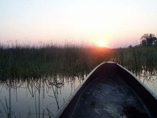 Maun, Botswana: Delta