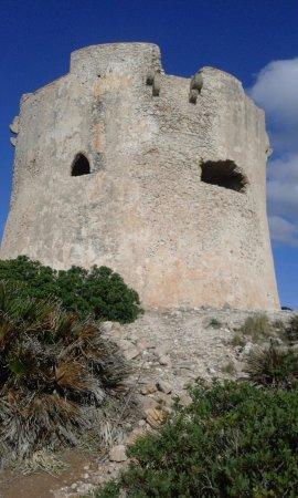 Torre del Tramariglio