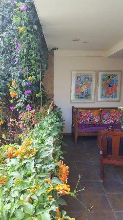 Casa de Las Bugambilias B&B: 20171113_095534_large.jpg
