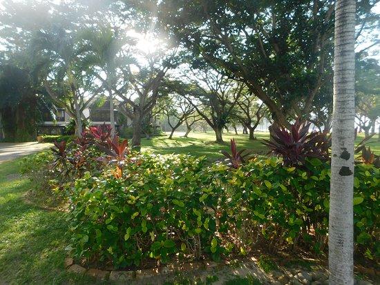 Nexus Resort & Spa Karambunai: beautiful kept grounds