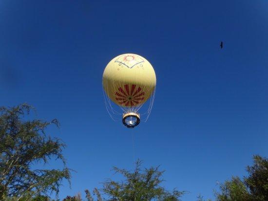 Escondido, كاليفورنيا: Tethered Balloon Ride
