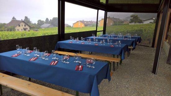 Villeneuve, سويسرا: Terrasse dans les vignes
