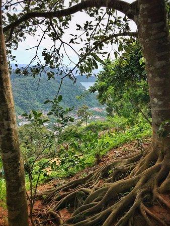 Chalong, Thailand: вид с лесенки