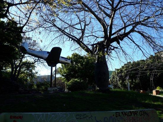 El Palomar, Argentina: El Avion...