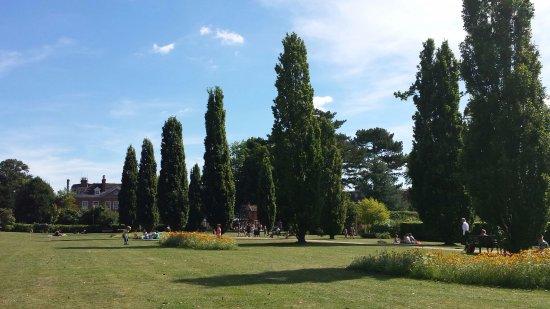 Horsham Park trees