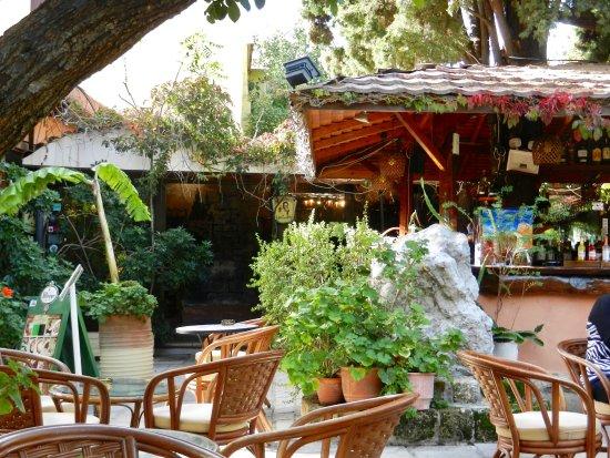 Socratous Garden: In this little garden, great!