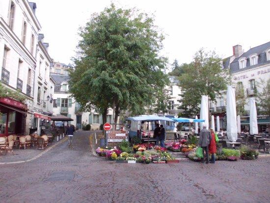 Glenouze, France: visit chinon