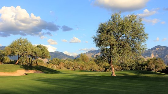 Oro Valley, AZ: Enjoy an afternoon on the course