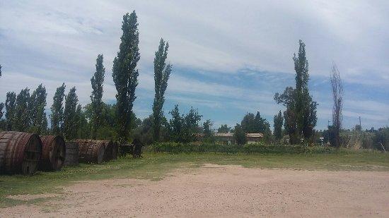 San Rafael, Argentina: 20171117_124213_large.jpg