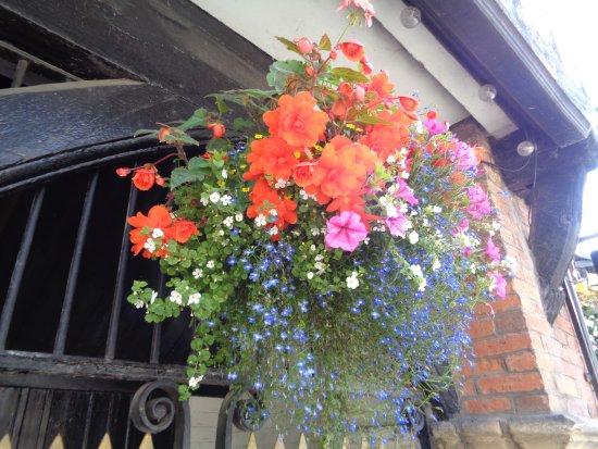 Much Wenlock, UK: Hanging Baskets
