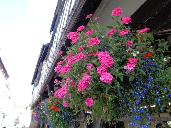 Much Wenlock, UK: Hanging Baskats