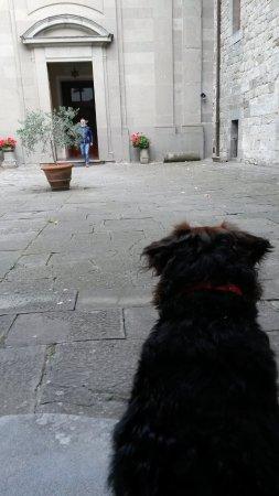 Camaldoli, Italien: Mi aspetta fuori