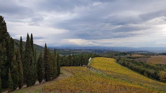 Gaiole in Chianti, İtalya: 20171115_151053_large.jpg