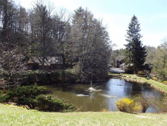 Mitchell's Lodge & Cottages, Inc. รูปภาพ