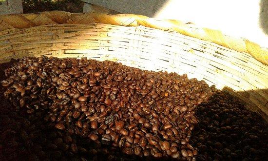 San Juan la Laguna, Guatemala: El Tata Cafe