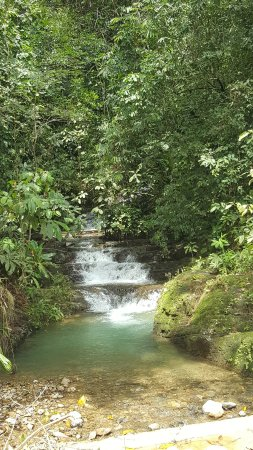 Dominical, Kostaryka: 20171111_113442_large.jpg