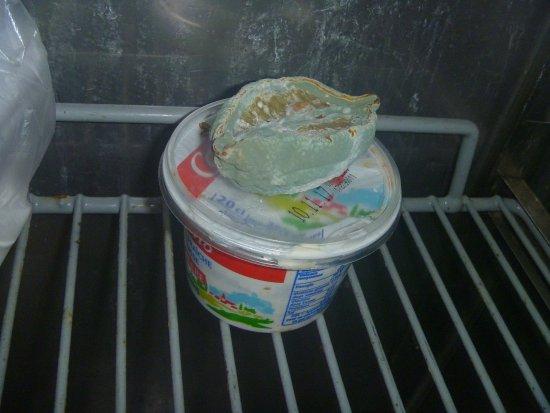 Echirolles, ฝรั่งเศส: Guest kitchen fridge. Seriously!?