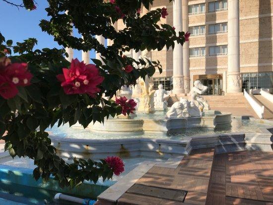 kaya artemis resort casino bewertung
