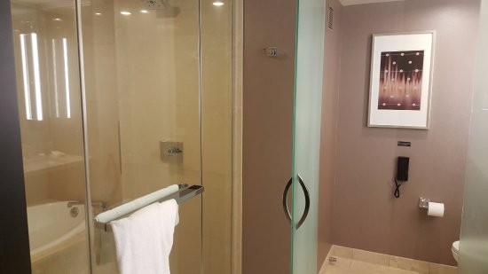 large shower with tub built into stall beside the standing area ...