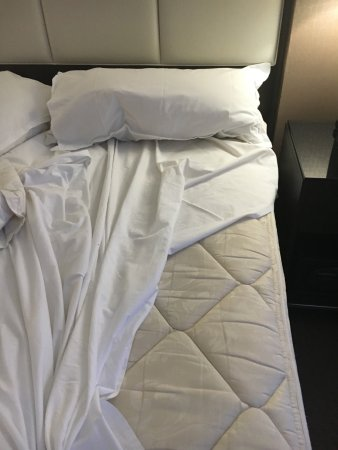 Sheraton Suites Country Club Plaza: Poorly fitting mattress pad and sheet won't stay on