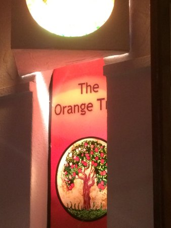 The Orange Tree: photo6.jpg
