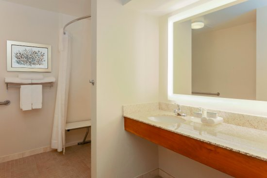Homewood Suites by Hilton St. Petersburg Clearwater: Accessible Suite Bathroom