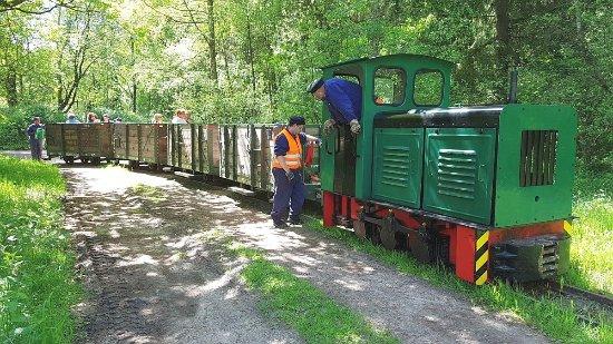 Der Moorbahnzug der Oskar-Alexander-Kurbahn Bad Bramstedt