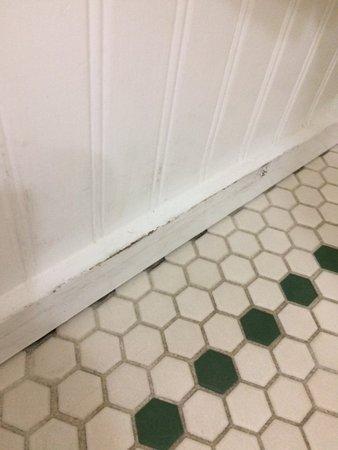 Elizabeth Pointe Lodge: Damaged front to bath tub
