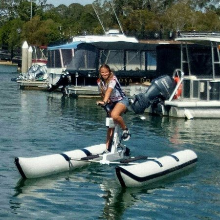 Noosaville, Australia: For all the family to enjoy on Noosa River
