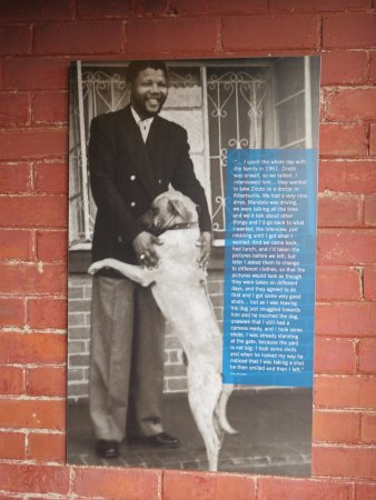 Mandela House: One of several wall posters