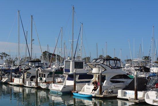 Дана-Пойнт, Калифорния: Dana Point