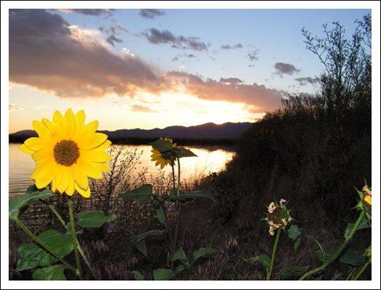 Best Western Paradise Inn: Another beautiful Beaver sunset!