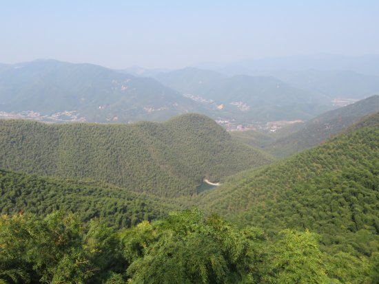 Mogan Mountain 이미지
