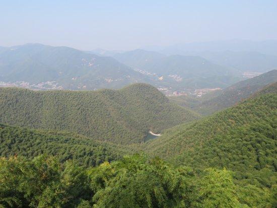 Округ Декин, Китай: Green green green
