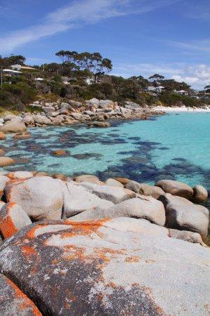 Binalong Bay, ออสเตรเลีย: The Bay
