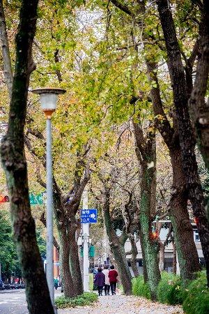 松壽廣場公園