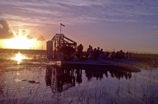 Florida Everglades Night Airboat Tour ...
