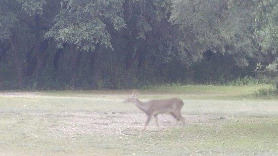 Brackettville, Teksas: 1109171102_large.jpg