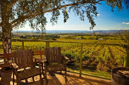 Yarra Valley Small-Group Weintour mit ...