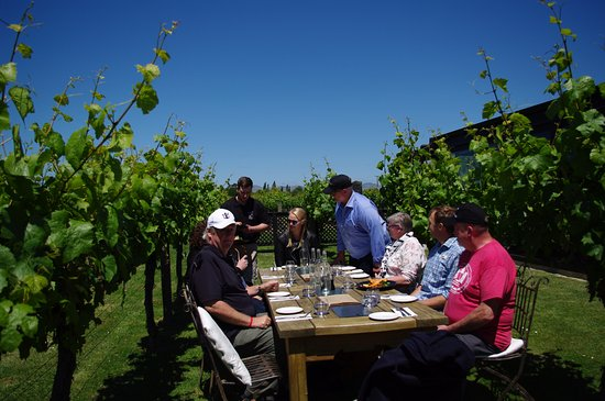 Blenheim, New Zealand: Lunch in the vineyard with the gang.