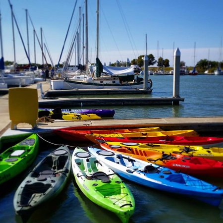 Delta Kayak Adventures: High quality recreational, fishing and sea kayaks available and paddleboards