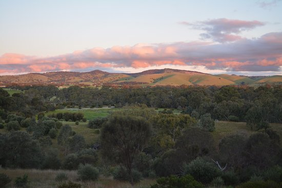 Rowland Flat, Australia: sunrise view is to die for