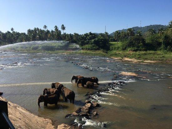 Hotel Elephant Park : photo0.jpg