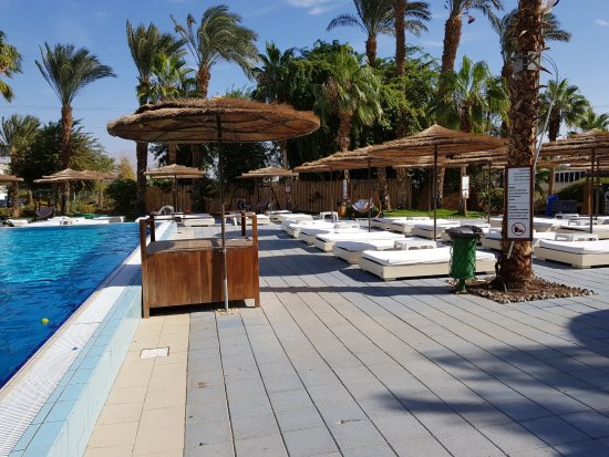 U Coral Beach Club Eilat : הבריכה והחוף הכל נקי ומזמין השרות והיחס נפלא