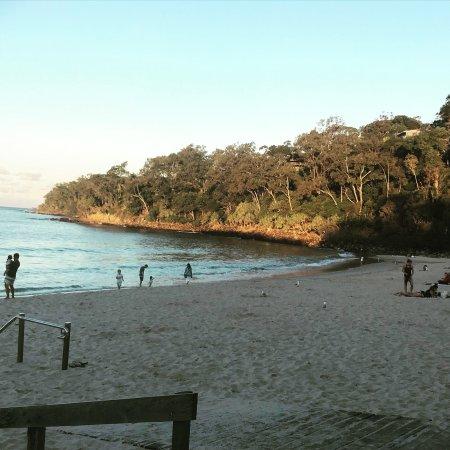Sunshine Beach Photo