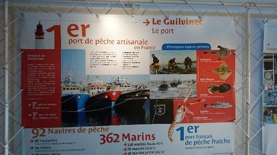 Guilvinec, Γαλλία: DSC_5380_large.jpg